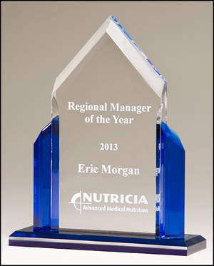 Engraved Acrylic Award with Blue Accents