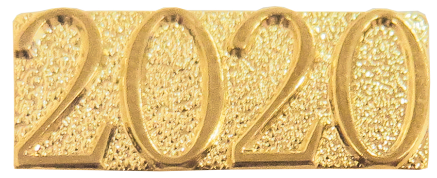 2020 Year Chenille Sport Pin