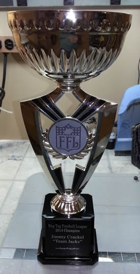 Silver Cup Fantasy Football Trophy