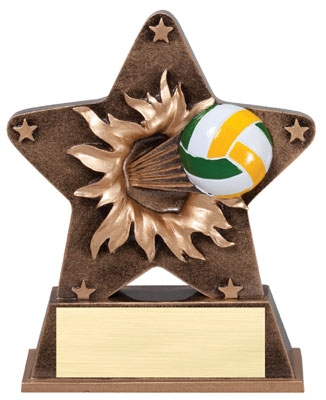 Volleyball Starburst Resin Trophy